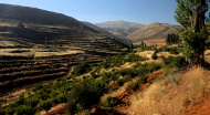 Hills above Zahle, Bekaa Valley, 2011